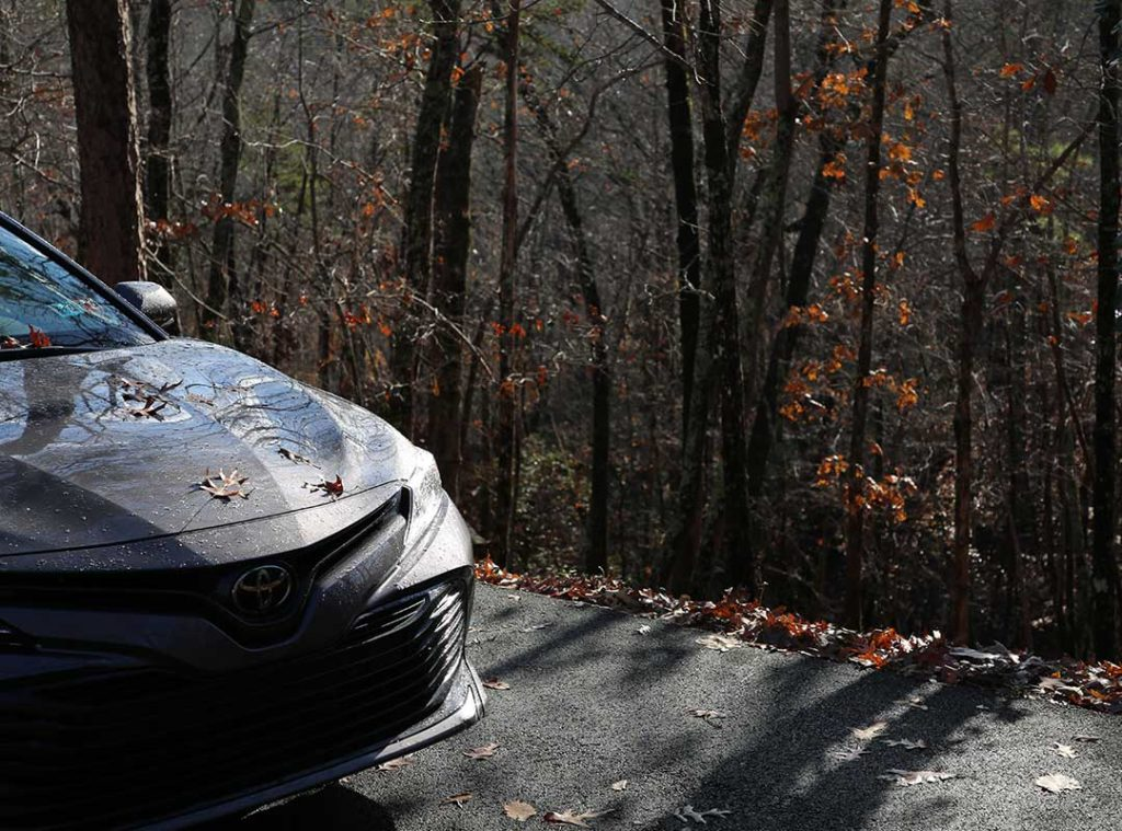 2019 Toyota Camry bonnet and trees